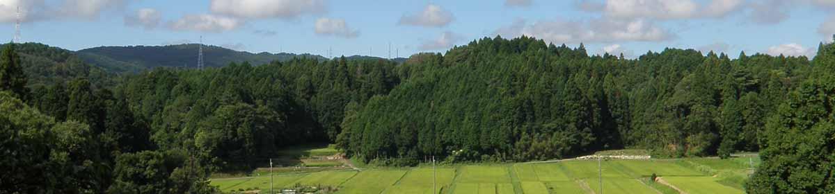 日本ボーイスカウトみしま地区茨木第1団